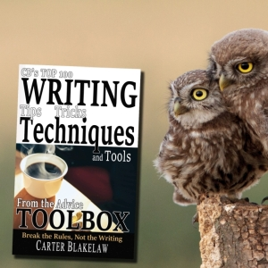CBs Top 100 Writing Tips, Tricks, Techniques and Tools from the Advice Toolbox